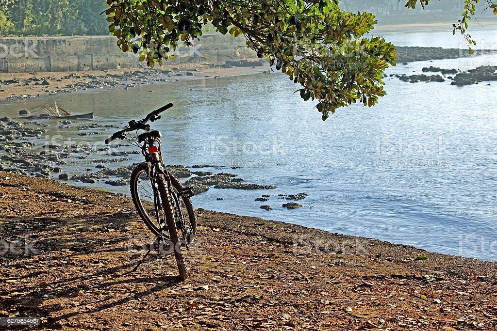 Cycling Along Coastline stock photo