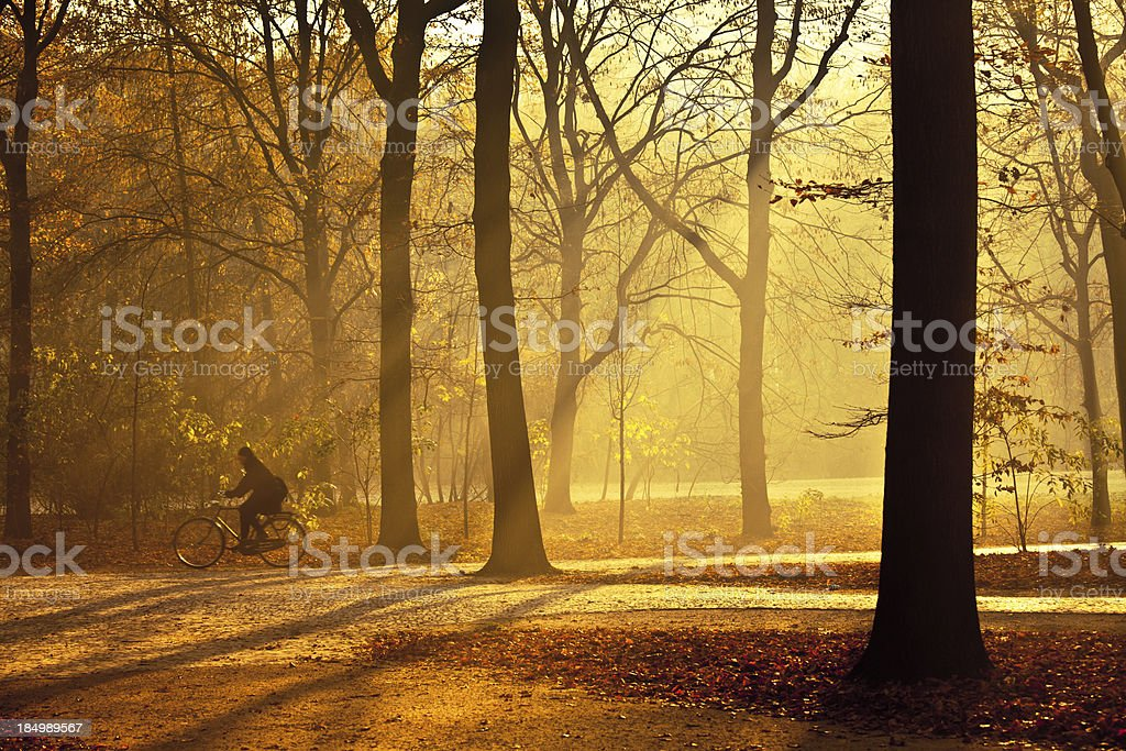 Cycling in City Park at Morning, Tiergarten, Berlin stock photo