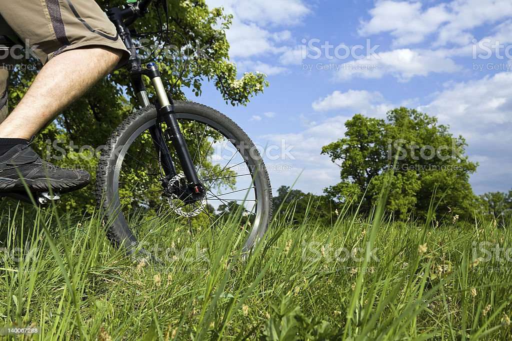 Cycling in forest royalty-free stock photo