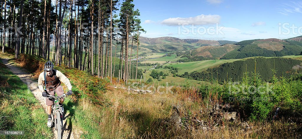 Cycling in the forest royalty-free stock photo