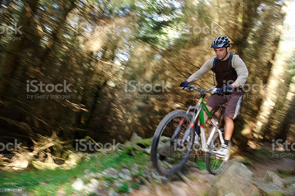 Cycling in the forest stock photo