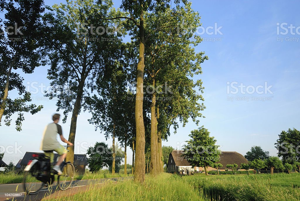 Cycling in the Netherlands royalty-free stock photo