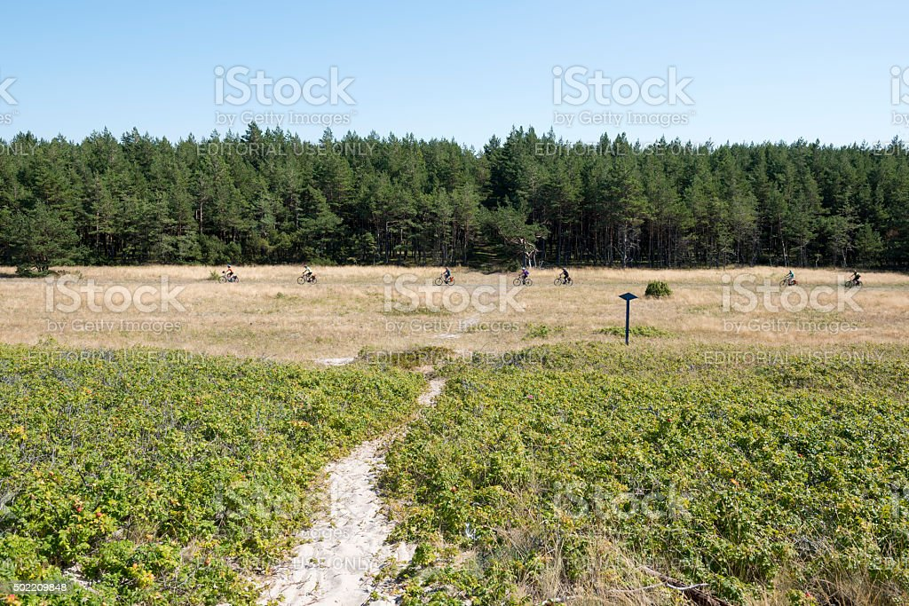 Cycling the Curonian Spit, Lithuania stock photo