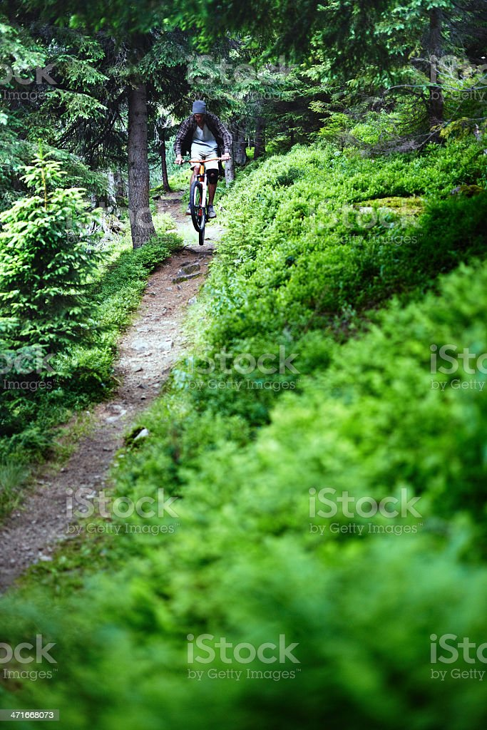 Cyclist at mountain forest stock photo