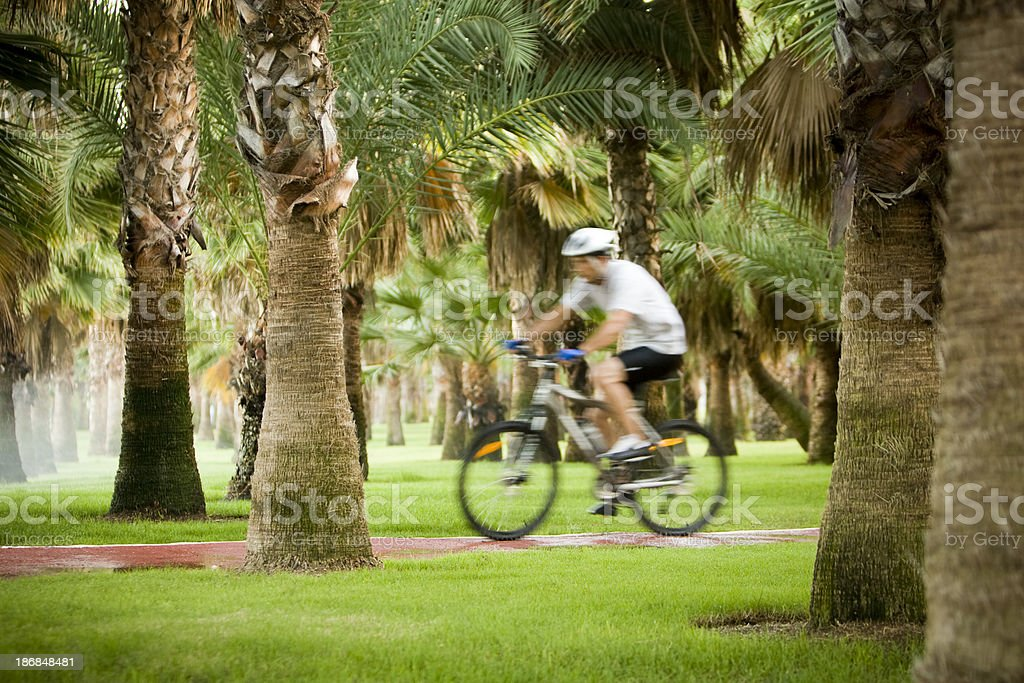 Cyclist in motion royalty-free stock photo