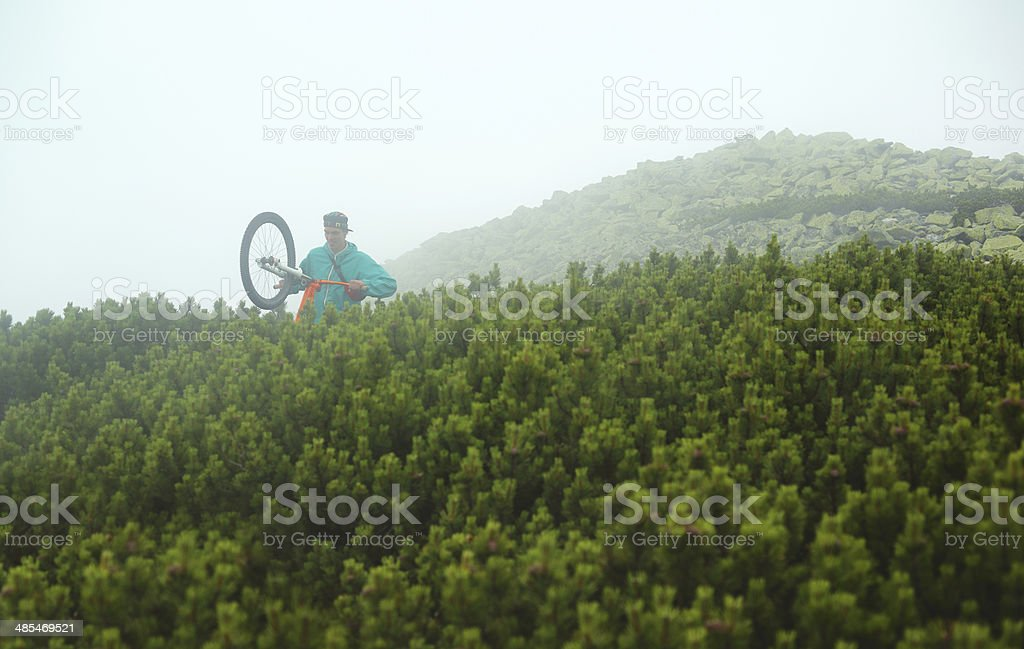 Cyclist in mountain forest stock photo