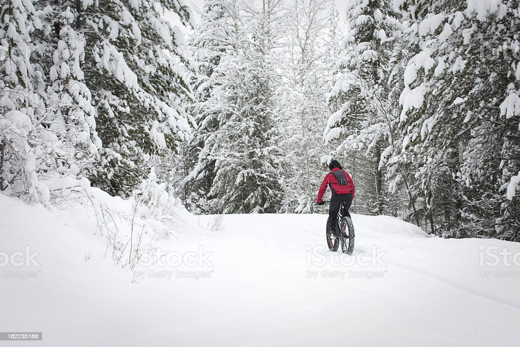 A cyclist on a snow bike riding on a trail in a snowy forest royalty-free stock photo