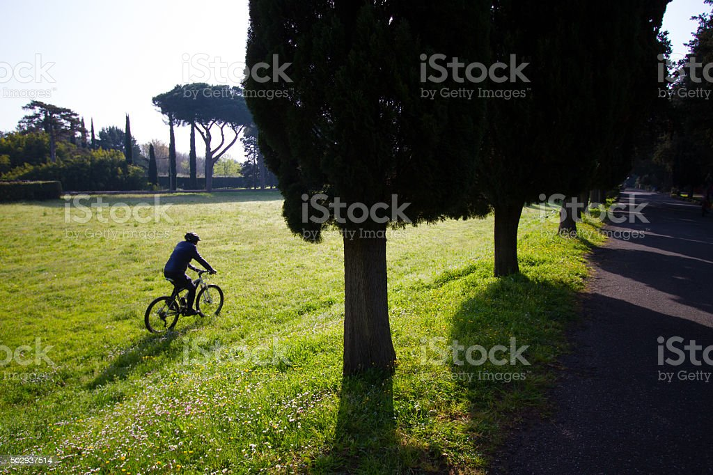 Cyclist on Spring Grass, Appian Way, Rome stock photo