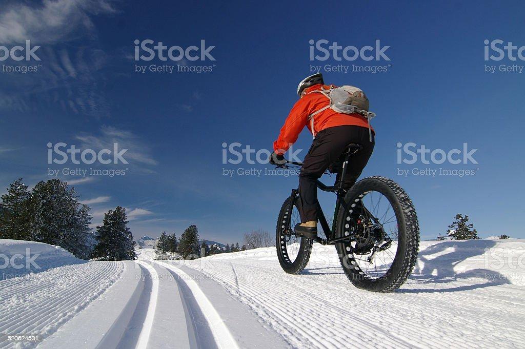 Cyclist riding a fat bike on a nordic ski trail stock photo