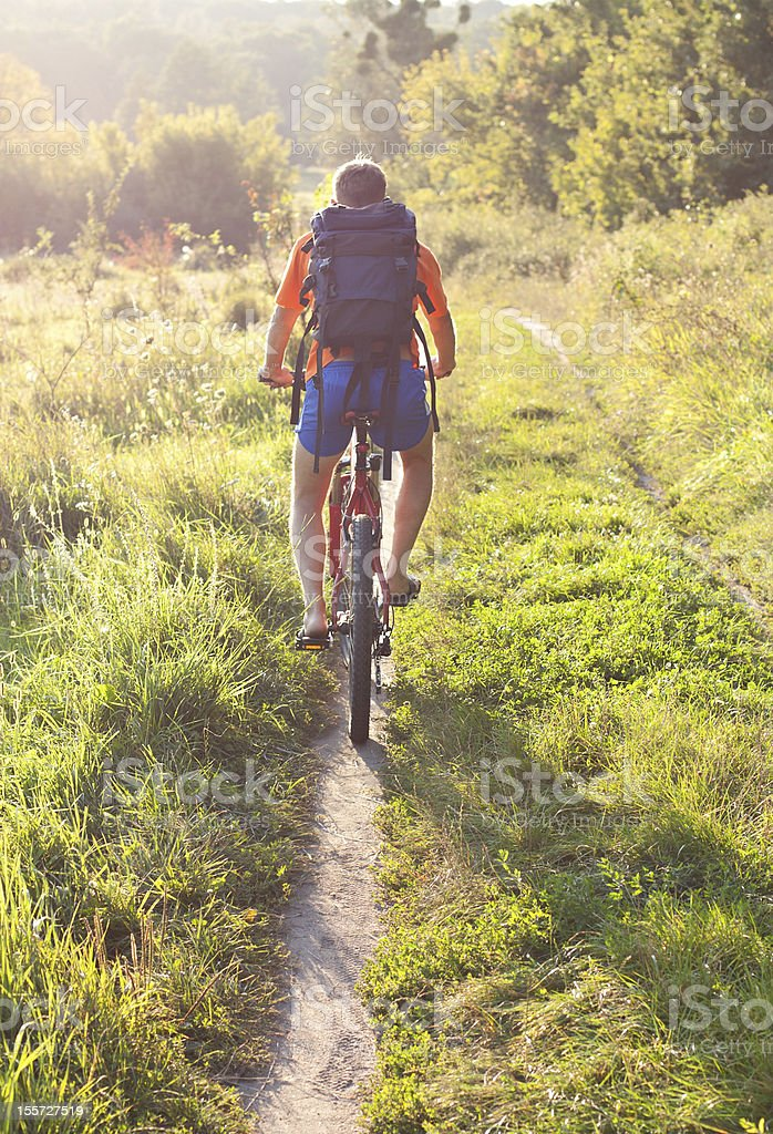 Cyclist riding away on the road. Back to us royalty-free stock photo