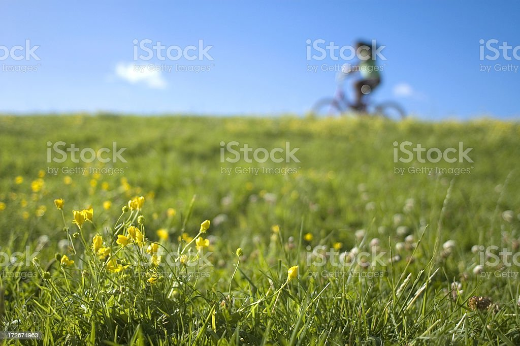 Cyclist Riding Past Flowers royalty-free stock photo