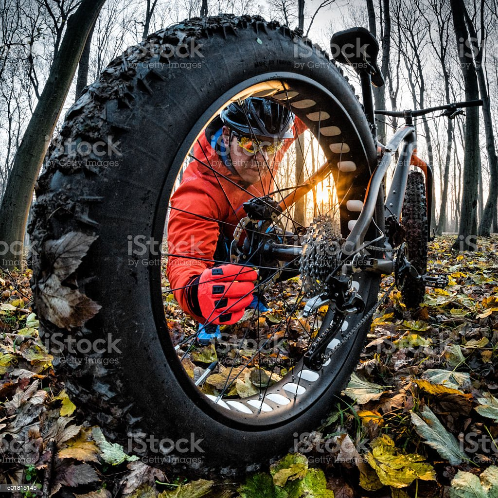 Cyclist with fat bike in the forest stock photo