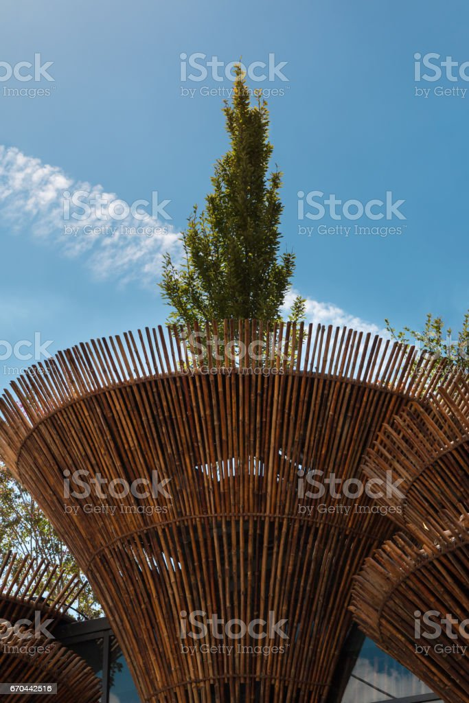 Cylindrical Bamboo Structure at Vietnam Exposition's Pavilion in Milan 2015 stock photo