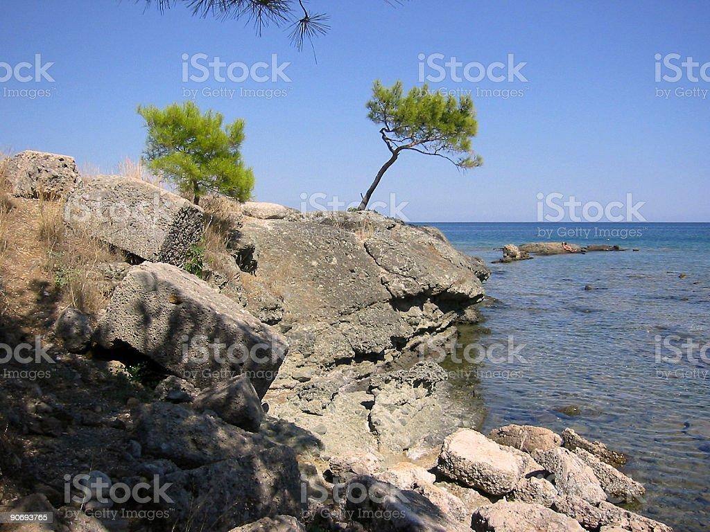 cypress cove coast turkey royalty-free stock photo