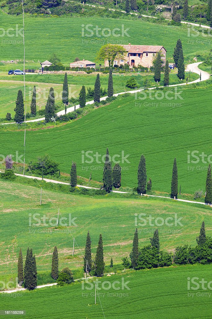 Cypress Lined Winding Country Road, Tuscany, Italy stock photo