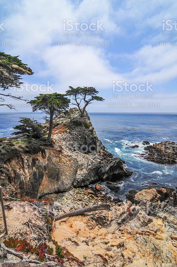 Cypress Point stock photo