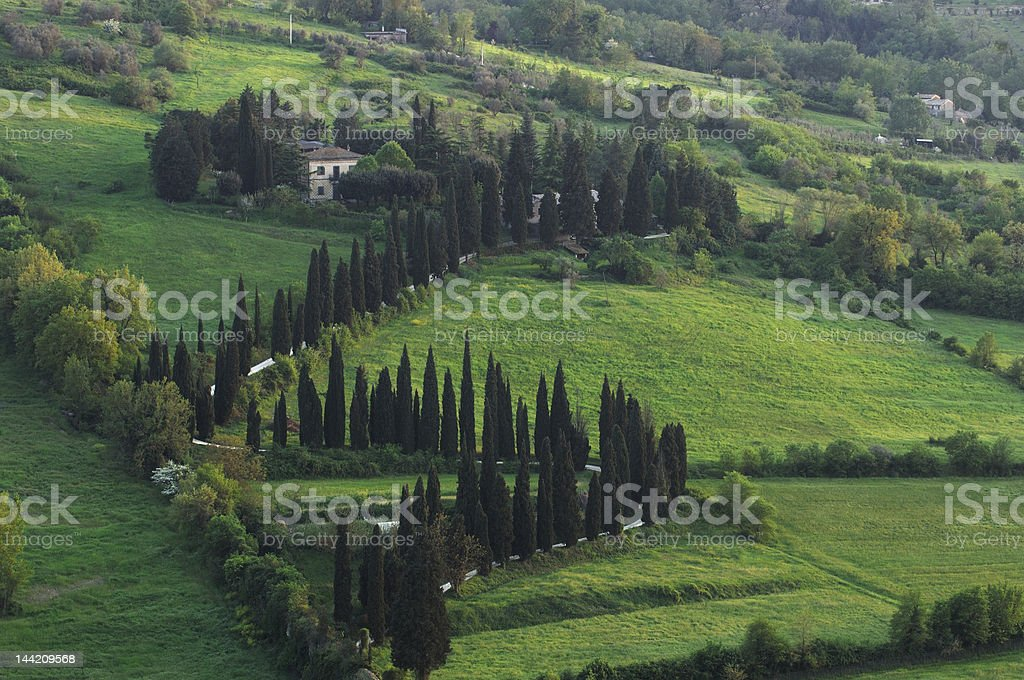 cypress road in umbria countryside royalty-free stock photo