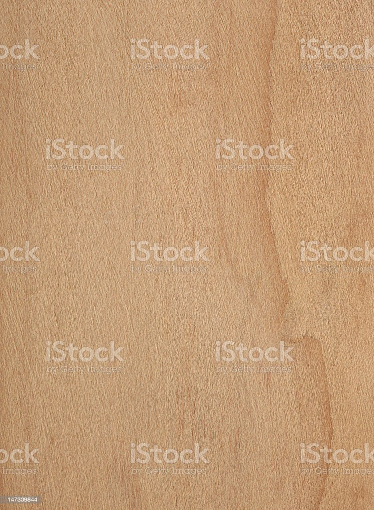Cypress Texture royalty-free stock photo