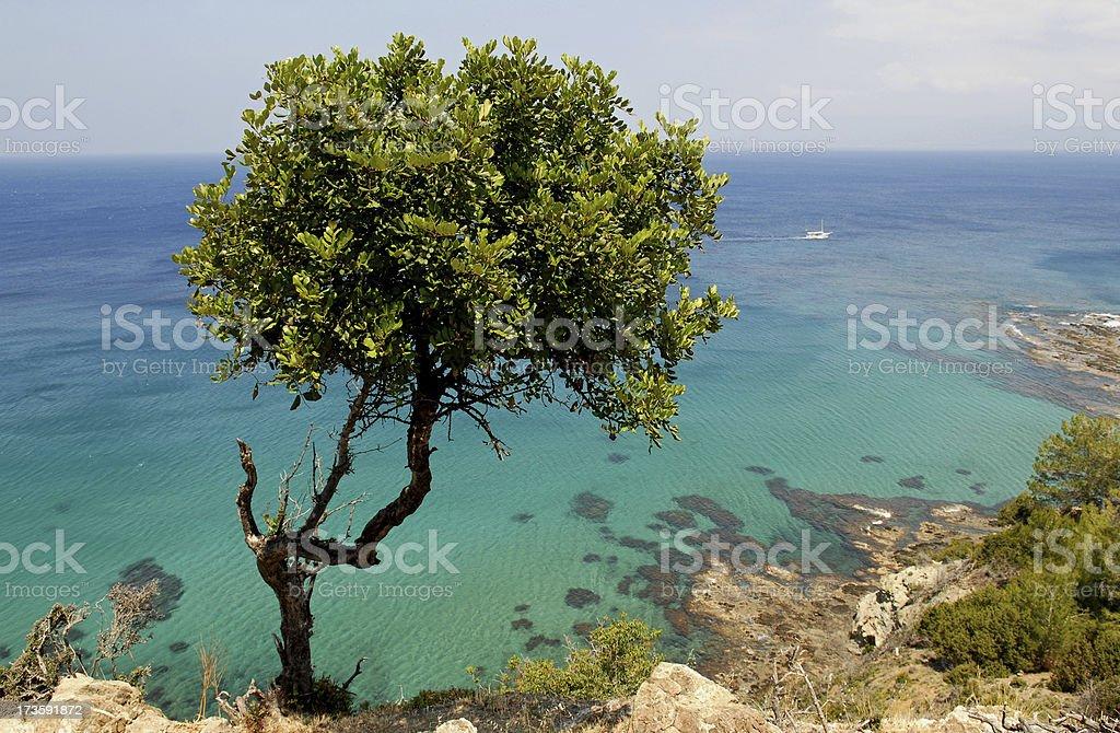 Cyprus Coast royalty-free stock photo