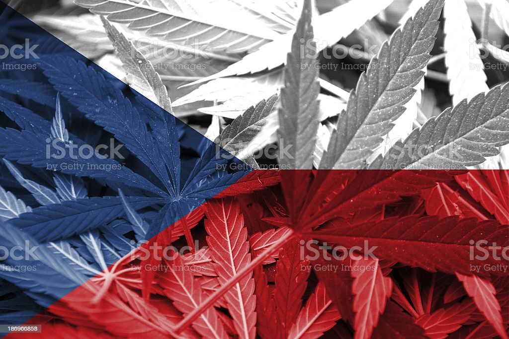 Czech Republic Flag on cannabis background. Drug policy royalty-free stock photo