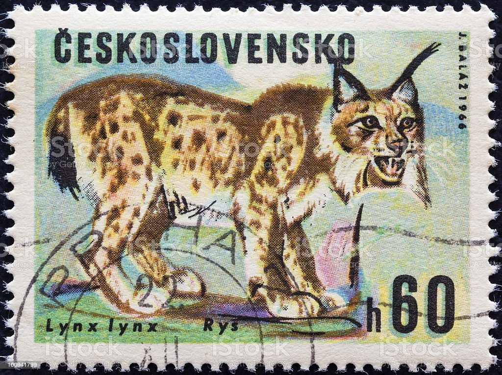 Czechoslovakian stamp shows a Lynx (1966) royalty-free stock photo