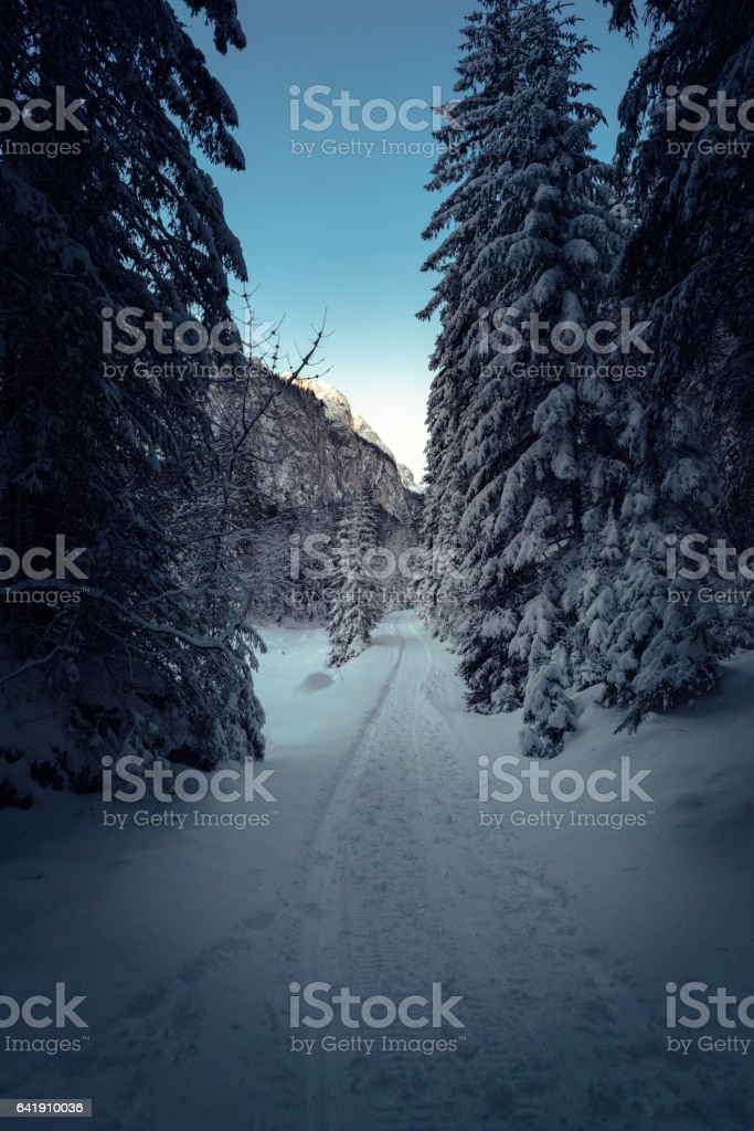 Dachstein view stock photo