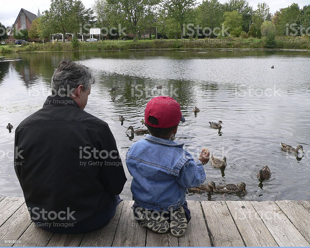 Dad and son feeding the ducks on a cloudy day royalty-free stock photo