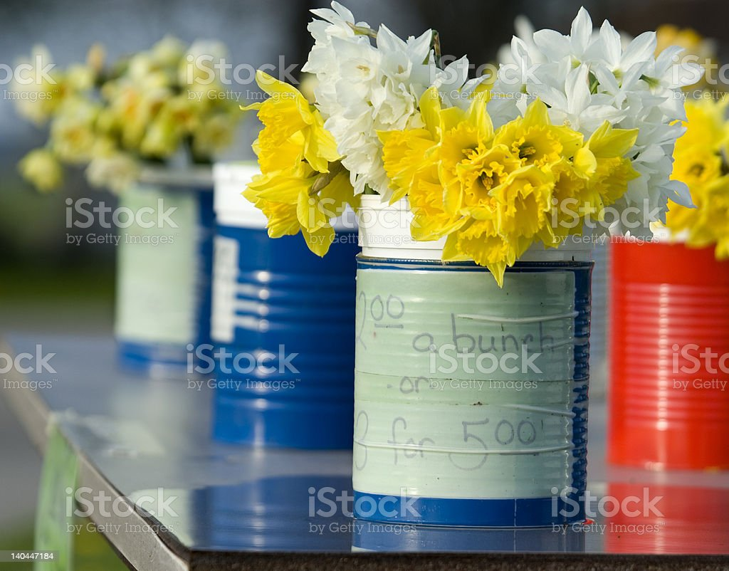 Daffodils - 3 for $5 royalty-free stock photo
