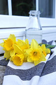 Daffodils at window