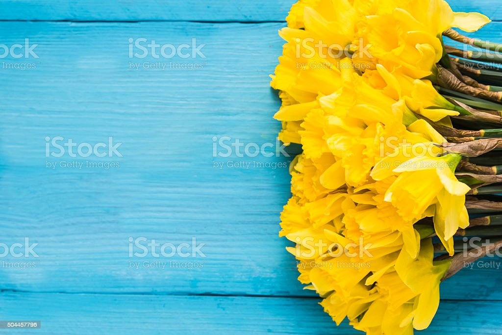 Daffodils on wooden background stock photo