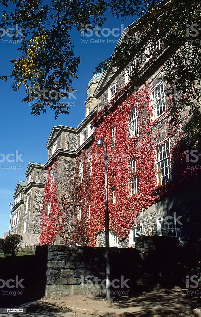 Dahousie University & Vine stock photo