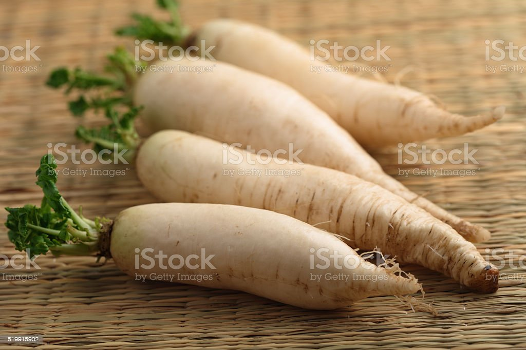 Daikon radish stock photo