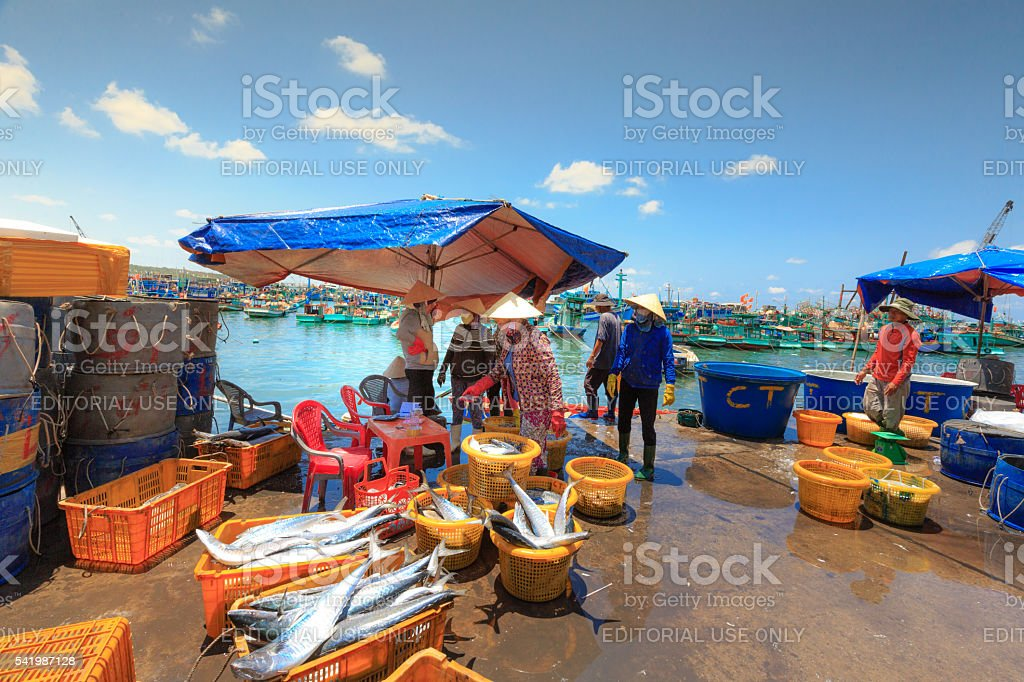 Daily bustling scene at fishing port on PhuQuoc island stock photo
