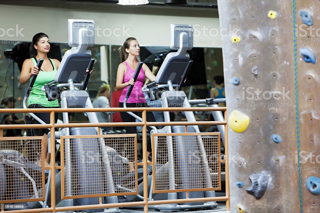 Daily workout at the gym royalty-free stock photo