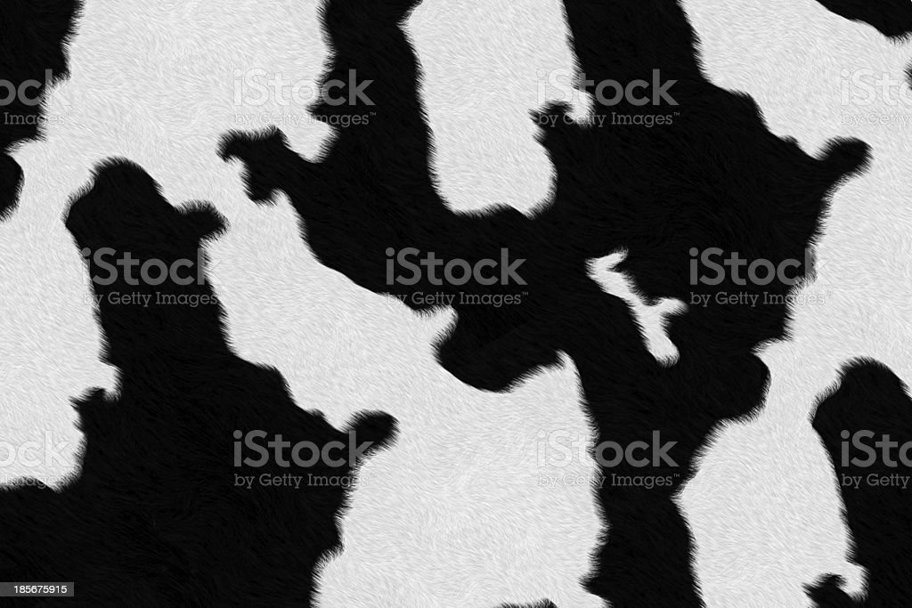 Dairy cow fur (skin) background or texture royalty-free stock photo