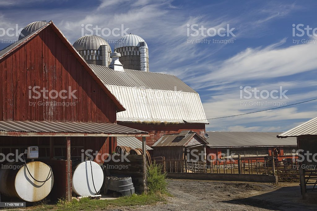 Dairy farm buildings, cows, and pens in Vermont, USA royalty-free stock photo