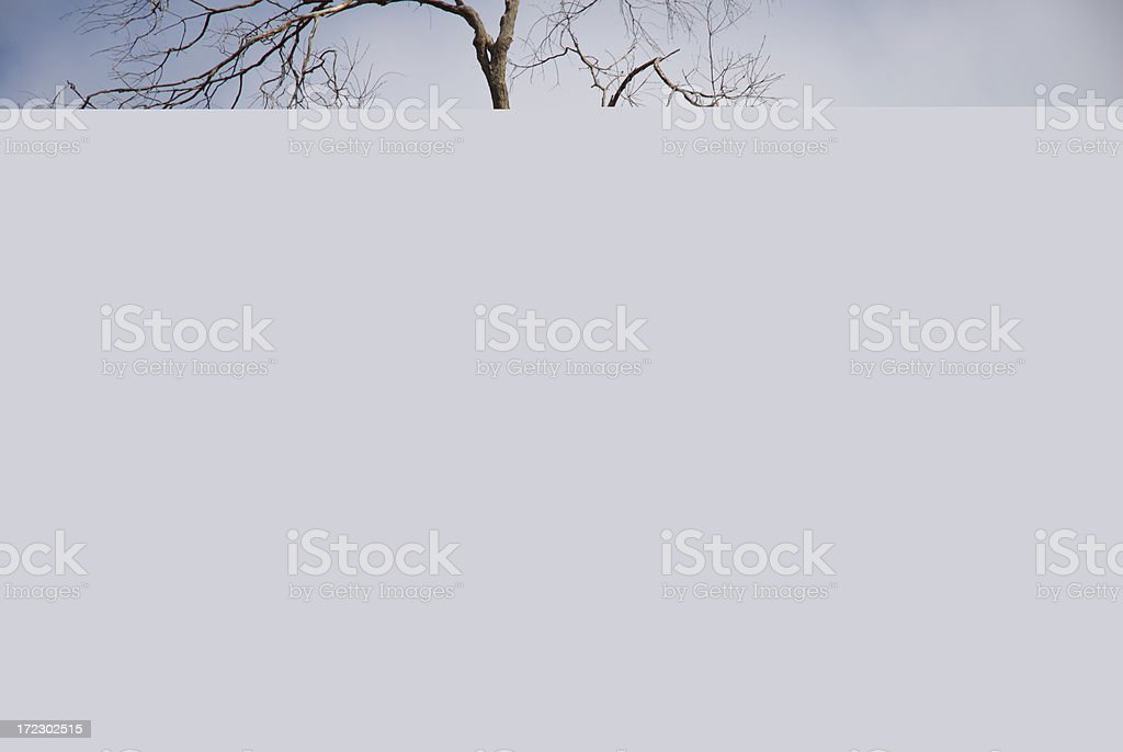 Dairy Farmers stock photo