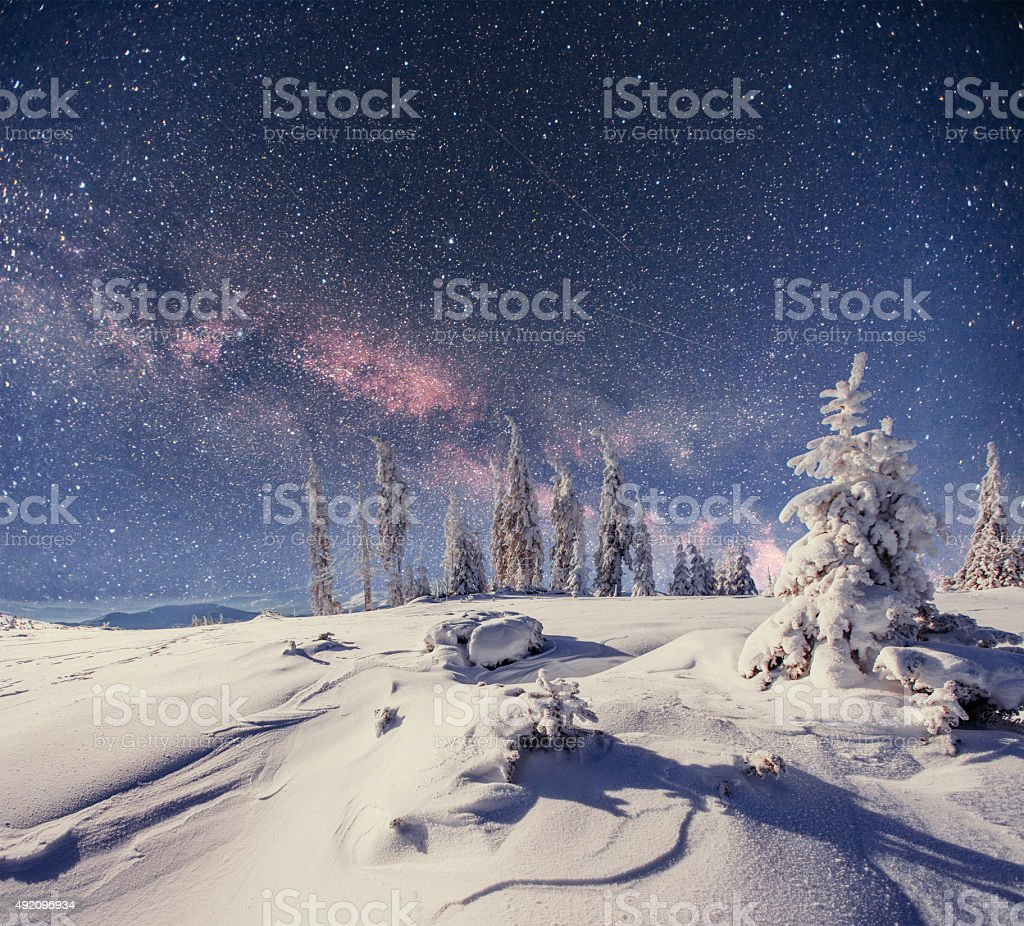 Dairy Star Trek in the winter woods stock photo