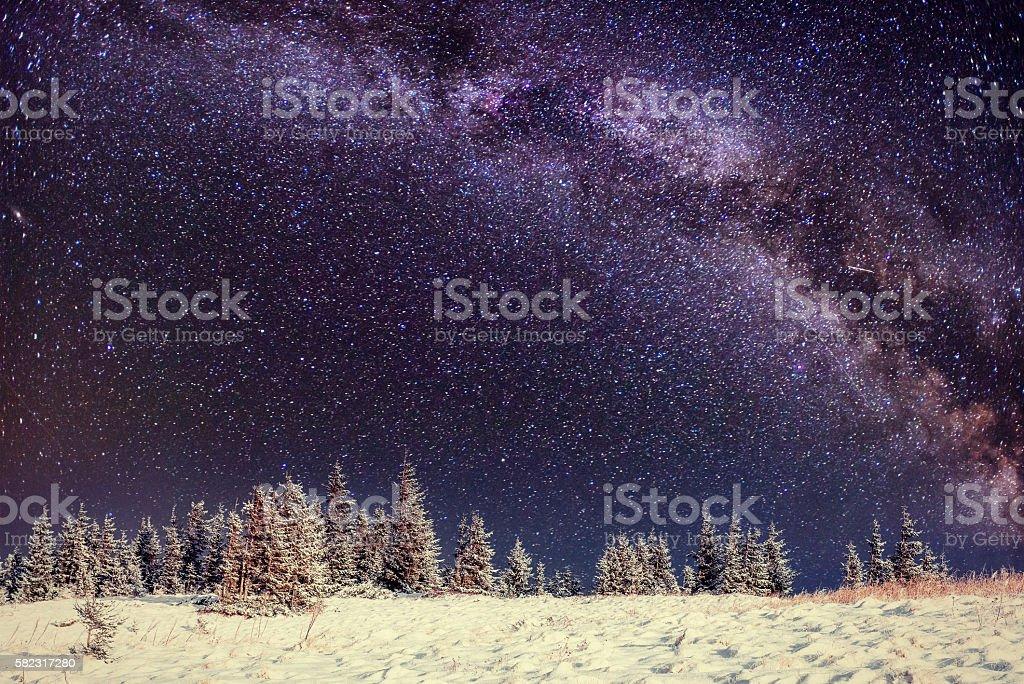 Dairy Star Trek in the winter woods stock photo