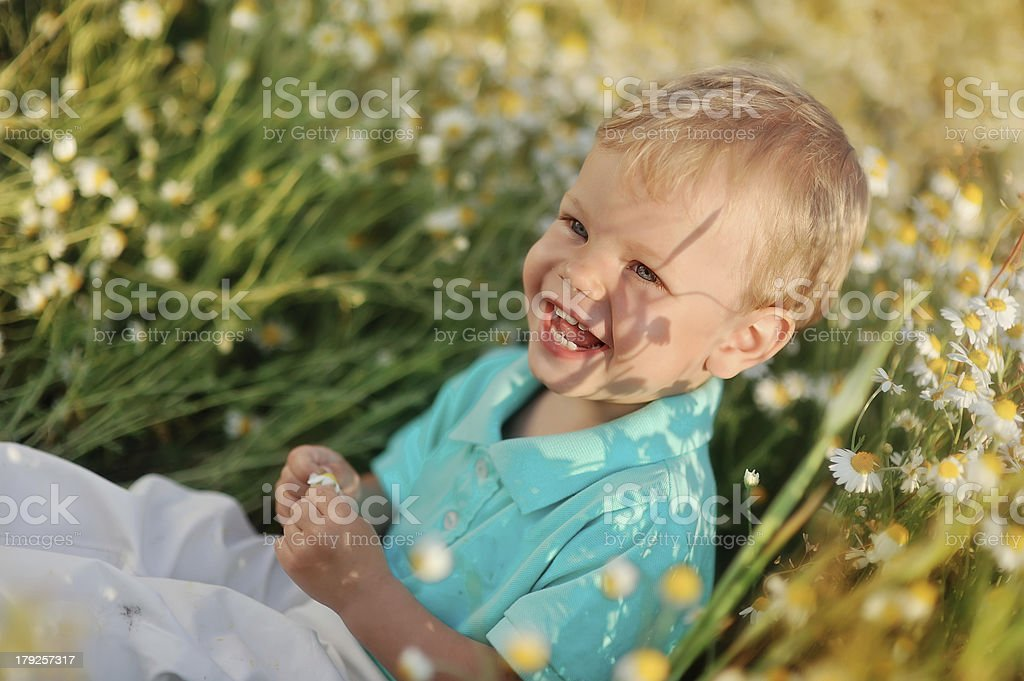 daisies and baby royalty-free stock photo