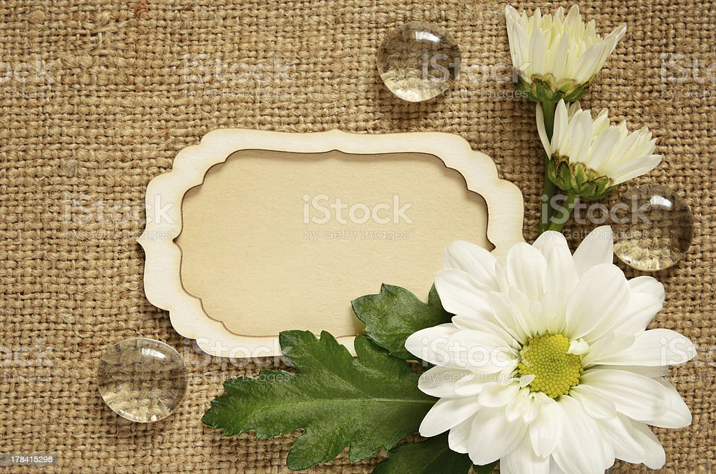 Daisy arrangement and a card royalty-free stock photo
