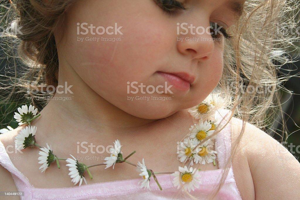 daisy chain stock photo