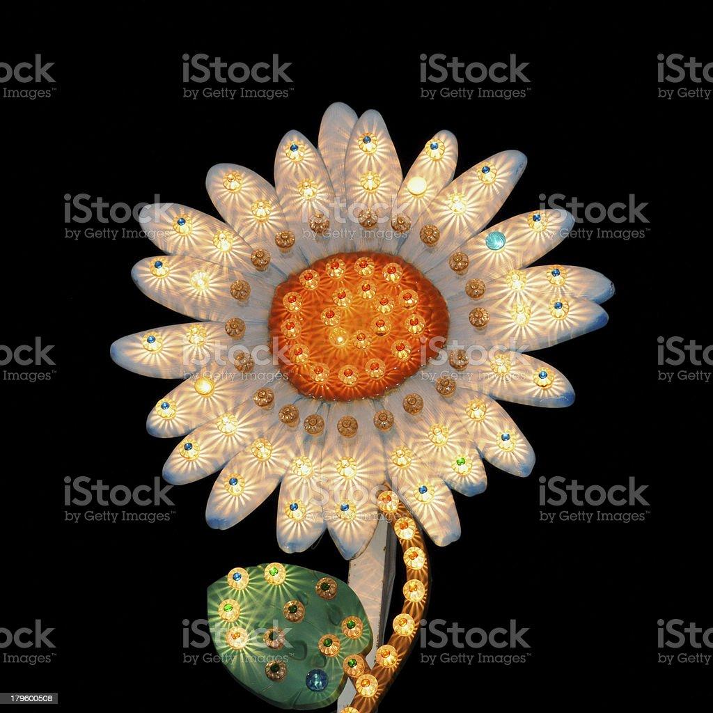 daisy flower flashing lights stock photo