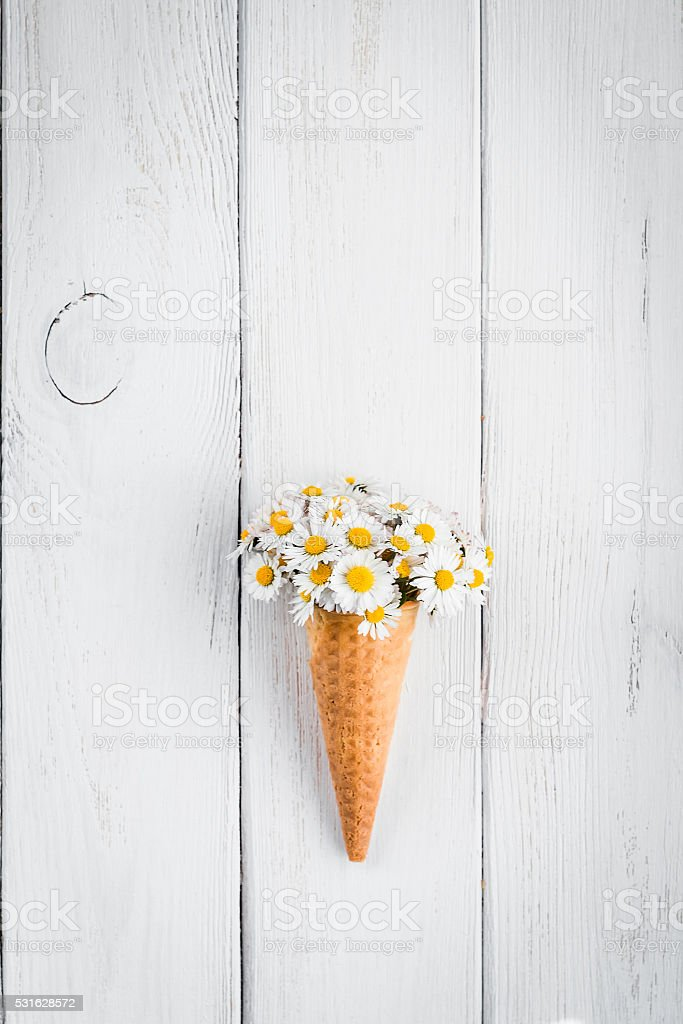 daisy flowers in the ice cream cone stock photo