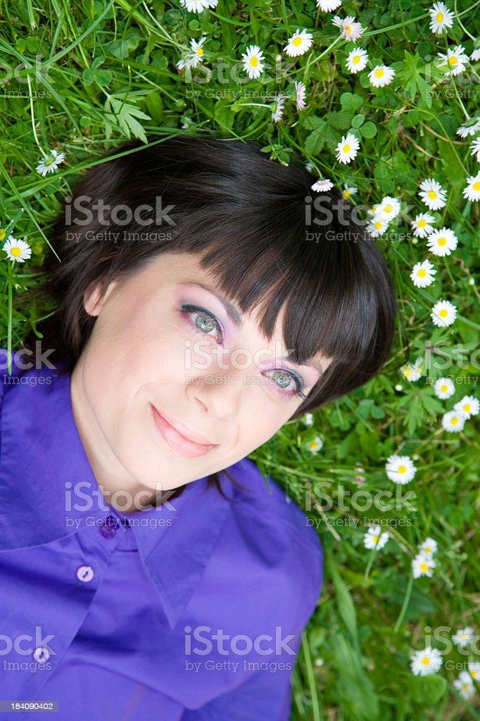 Daisy Love Summer Field royalty-free stock photo