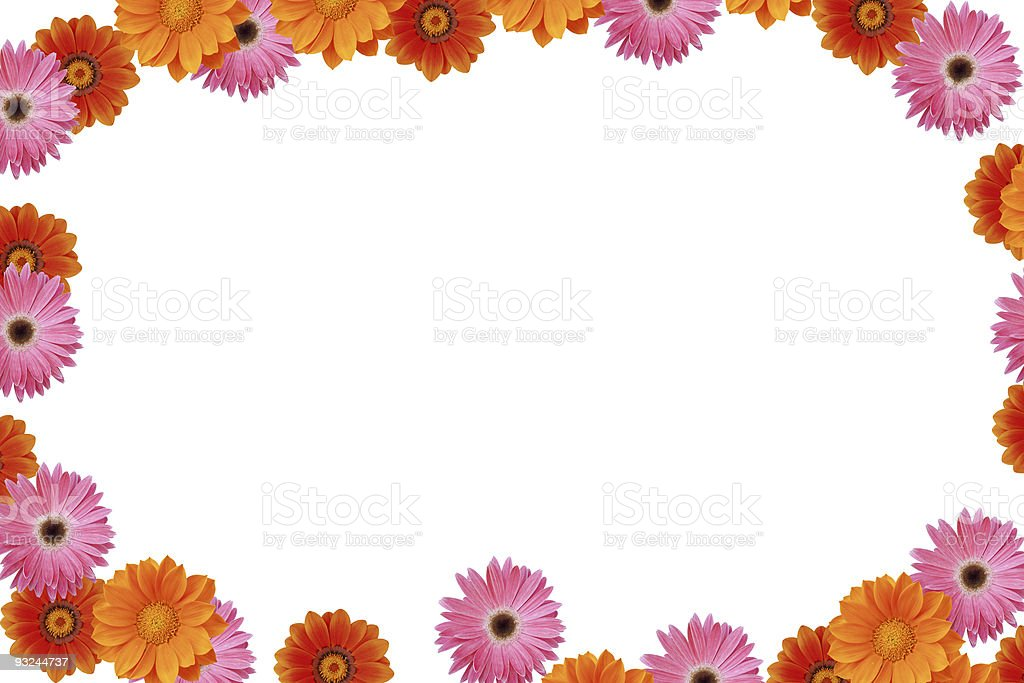 Daisy spring frame XXXL stock photo