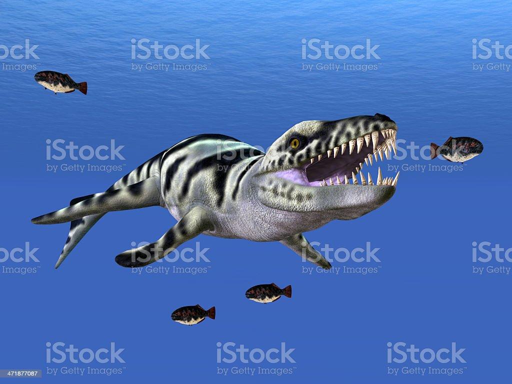 Dakosaurus stock photo