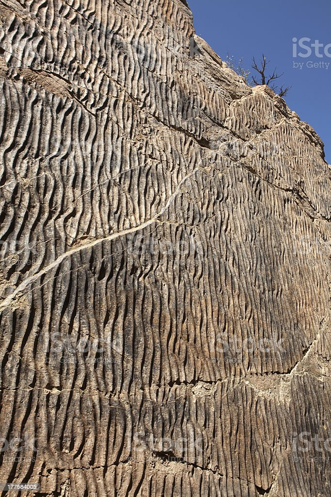 Dakota Sandstone RIpple Marks Colorado vertical royalty-free stock photo