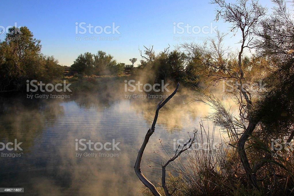 Dalhousie Springs, South Australia, Australia stock photo