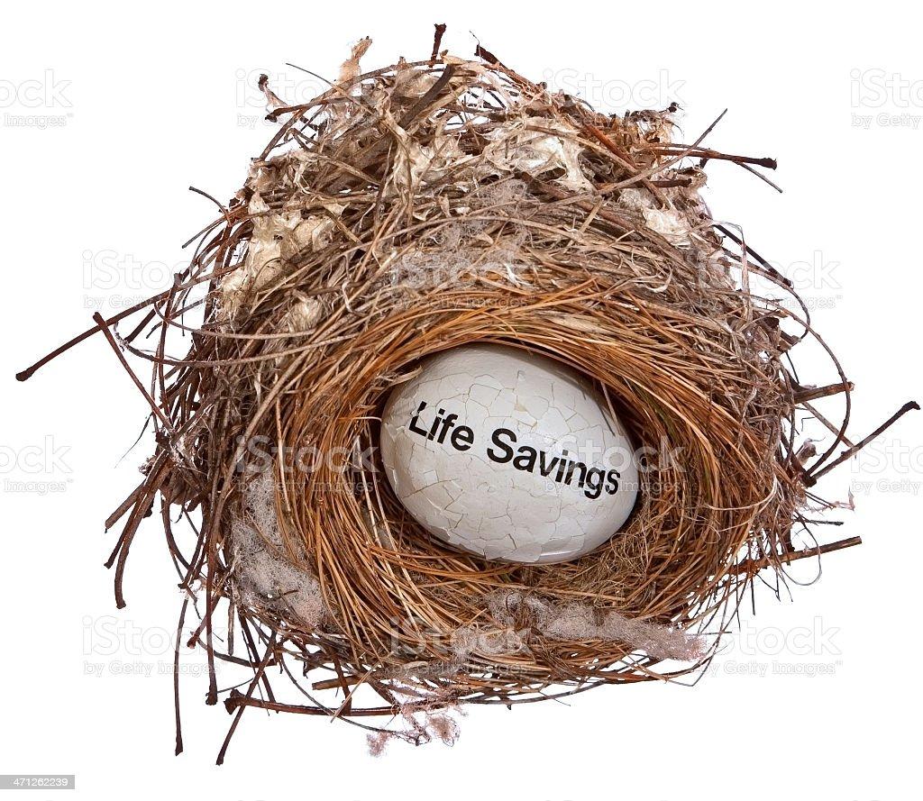 Damaged Life Savings Nest Egg royalty-free stock photo